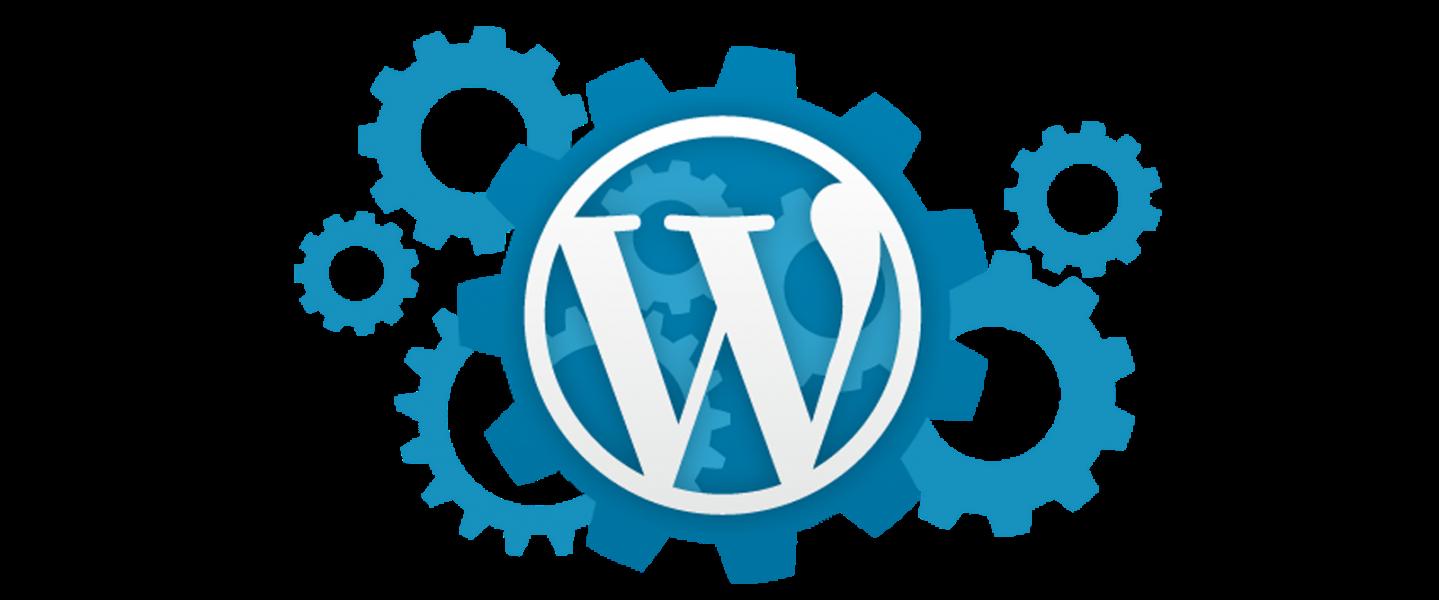11 formas de acelerar WordPress
